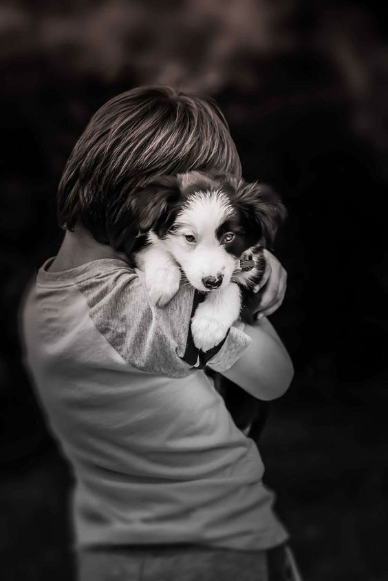 Puppy love by Goldie Lucarelli on 500px