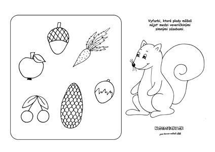 Čo papajú veveričky v zime? Pracovný list pre deti - Aktivity pre deti, pracovné listy, online testy a iné