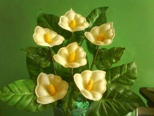 Flor de fomi