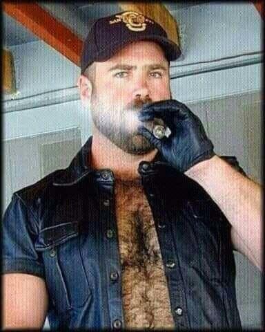 Gay Bear Tobacco