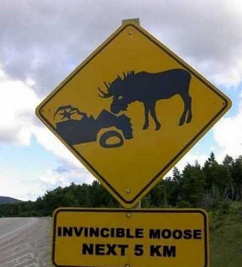 12 Hilarious Road Signs You Won't Believe Existed! Click to see more #lol signs. #funny #spon: