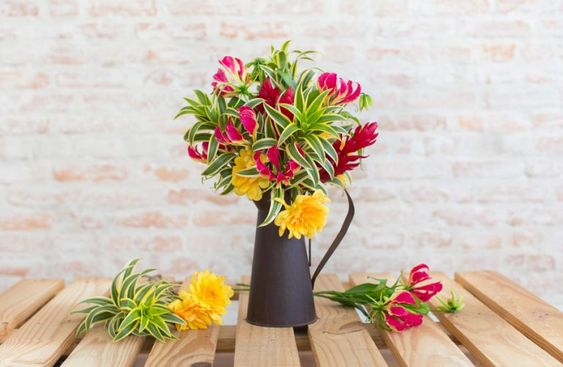 Flores de verão | Histórias de Casa