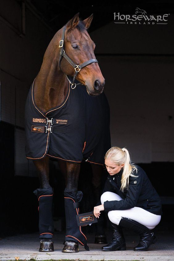 Horseriding Horserider Equine The Ionic Stable Sheet From Horseware For A W15 Visit Www Horseware Com To Equestrian Outfits Riding Outfit Horseback Riding