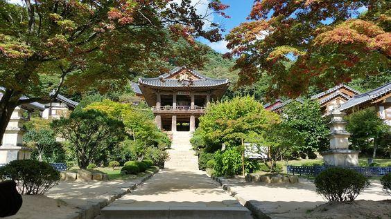 Đền Buseoksa Hàn Quốc dưới ánh nắng hè