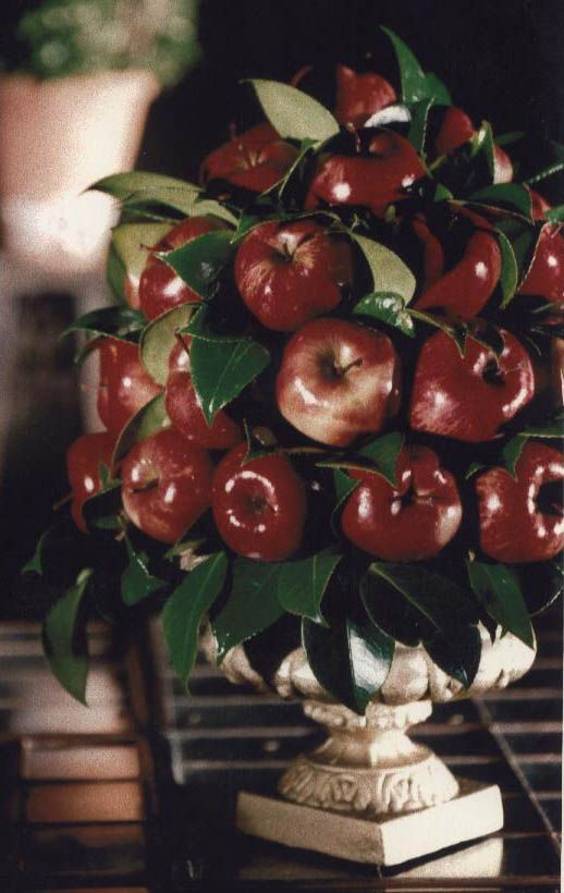 Garden parties centerpieces and apples on pinterest for Apple fruit decoration