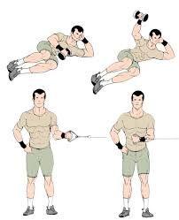 Resultado de imagen de shoulder exercises