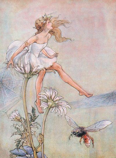 Ilustraciones de Florence Mary Anderson (1874 - 1930)