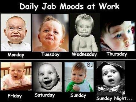 Daily Job/School Moods