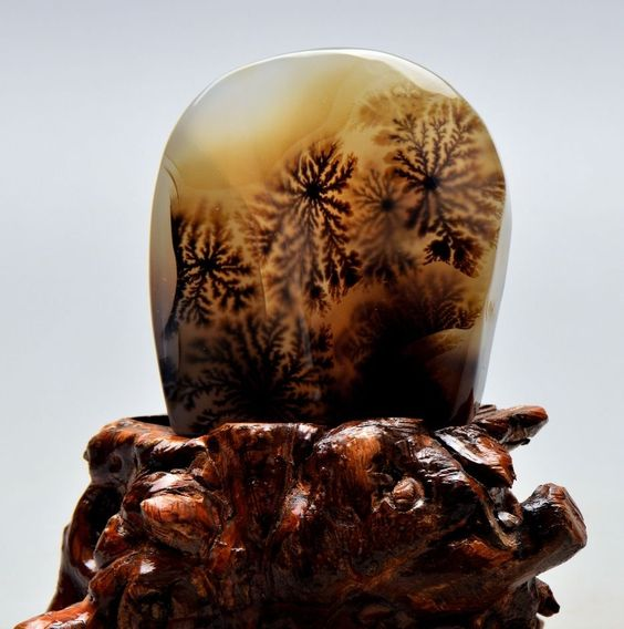 "3 3"" Polished Dendritic Agate Stand w Root Carving Stand Madagascar Z1908 