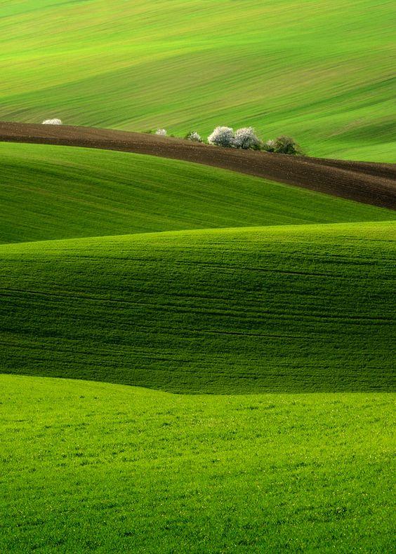 verdant green hills