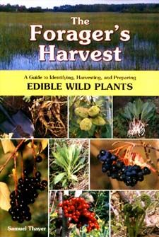 The Forager's Harvest by Samuel Thayer. This and his follow-up, Nature's Garden, are some of the best foraging guides I've seen. Learn to identify and harvest wild edibles.