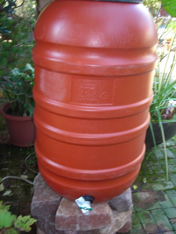 rain barrel up-cycled from olive curing barrel