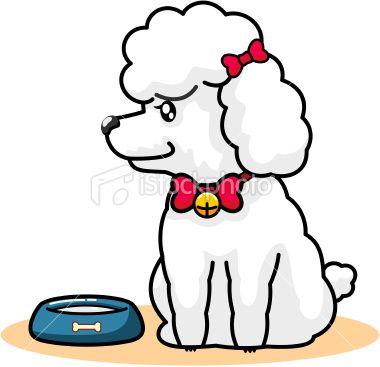 Cartoon Of Dog SchnauzerPoodle DrawingsDogs Pinterest