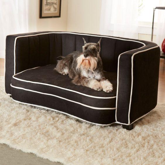 fun pet bed ideas - Google Search