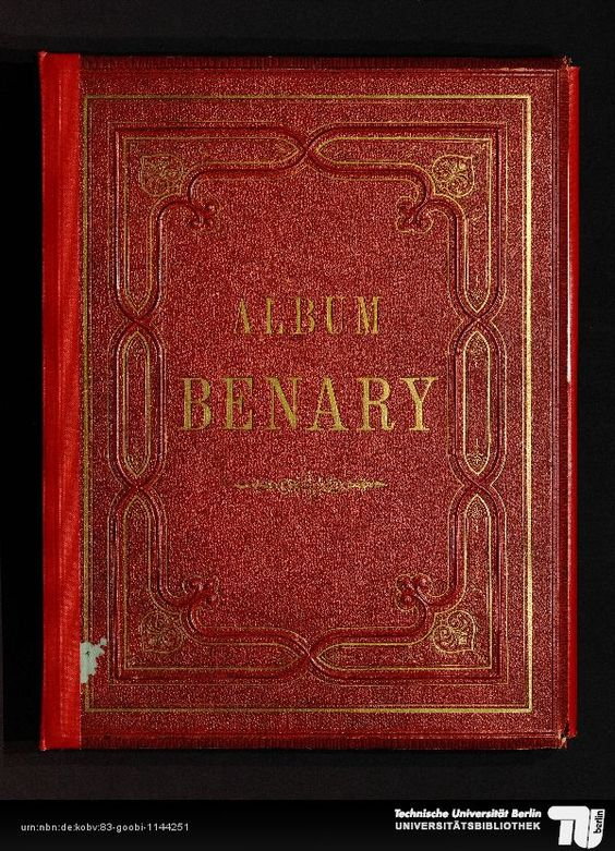 The wonderful book of Ernst Benary, finest botany pics of vegetables, recommended. Universitätsbibliothek TU Berlin