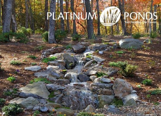 Pinterest the world s catalog of ideas for Farm pond maintenance