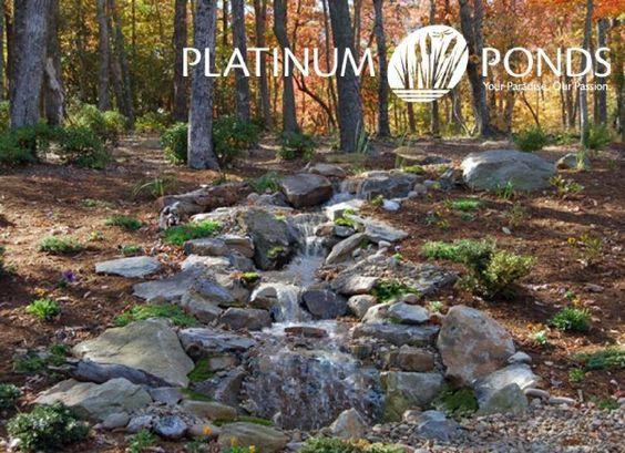 Pinterest the world s catalog of ideas for Farm pond maintenance