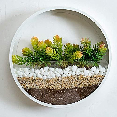 Round Glass Wall Planter In 2020 Succulent Hanging Planter Wall Plant Holder Metal Wall Planters