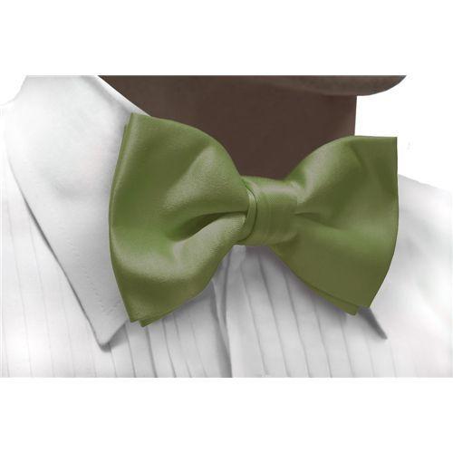 Bowtie SAGE Satin Pretied Bow Tie