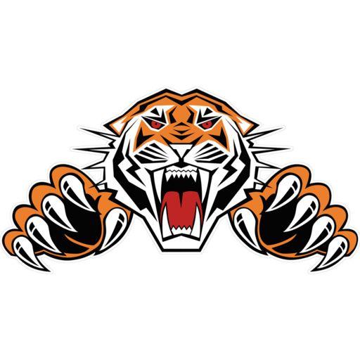 tiger logo google search tech logo pinterest logos