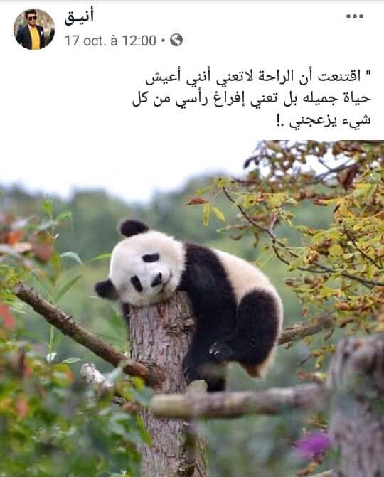 كلمات وحكم Beautiful Arabic Words Arabic Quotes Emoji Pictures