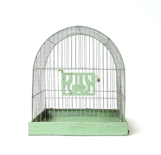 LOVE!! Vintage Hendryx Pale Green Bird Cage Birdcage from marybethhale on Etsy