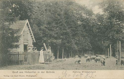 Wendland-Archiv - Hohenfier an der Göhrde