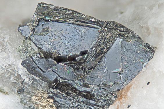 Annite. Poudrette Quarry, Mont Saint-Hilaire, Quebec, Canada FOV=4 mm Photo Douglas Merson