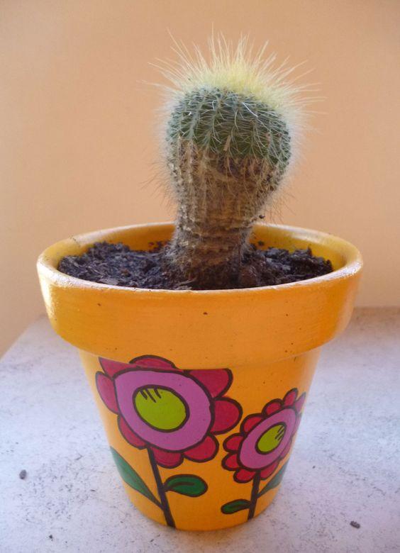 Amor suculento maceta pintada a mano en acr lico con - Cactus en macetas pequenas ...