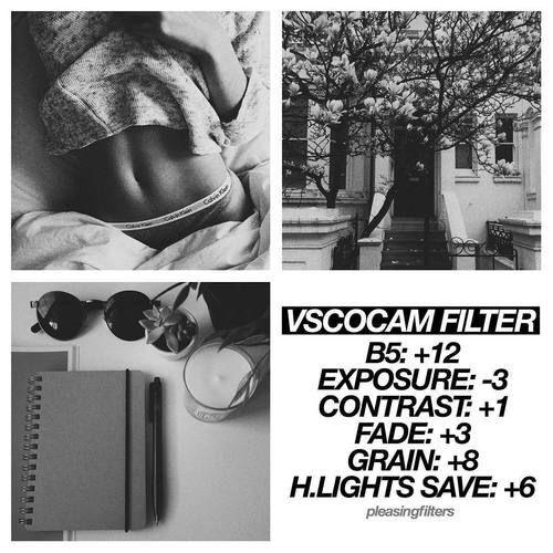 Vsco black and white presets