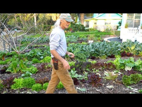 1000 A Week Front Yard Market Farming Bicycle Delivery W Jim