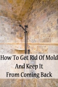 How To Get Rid Of Mold And Keep It From Coming Back
