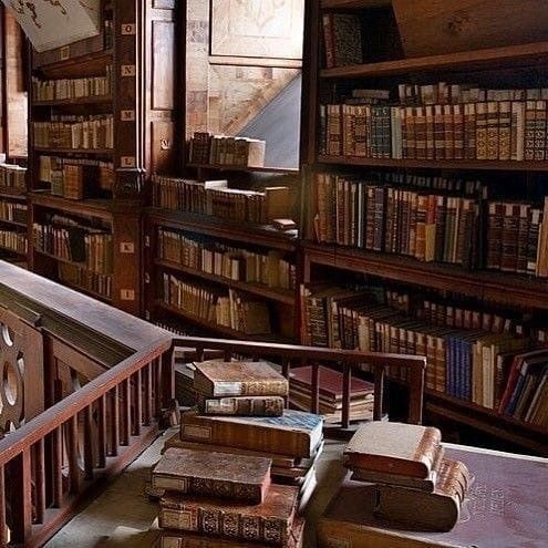 Pin By Caitlyn Cook On Aesthetic In 2020 Home Libraries Book Nooks Home Library