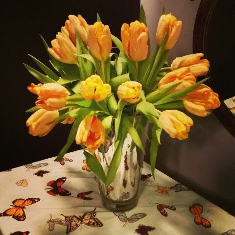 Grown in America Winter tulips makes it feel a liitle like Spring