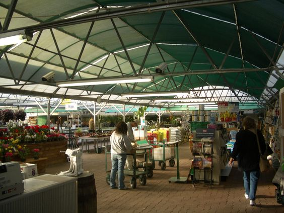Inside the early greenhouse.
