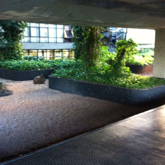 University of Brasília