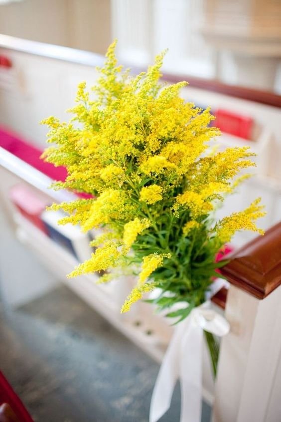 #flower astilbe in yellow.