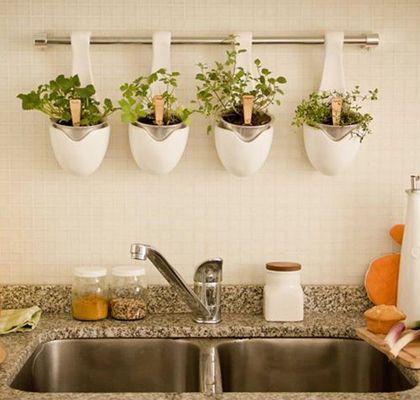 Ten tu propia huerta en el barral de la cocina la huerta for Ceramica para cocina