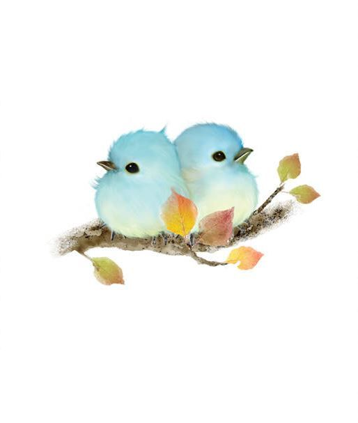 Pair Of Blue Birds Bird Drawings Watercolor Bird Bird Art