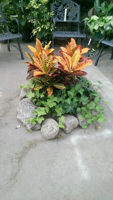 This is one of the cutest and simplest displays ever! Plant campfire!