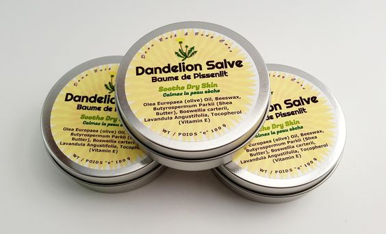 Da    Dandelion is helpful in soothing arthritic joints pain, back tension, sinus headaches, stiff necks, and weepy swollen skin sores. I personally can attest to the way it soothes sore muscles, especially in the neck It doesn't have a numbing effect–rather, it helps the body relax a bit, easing that tightness that can be so painful. All parts of the plant have been used for millennia to treat anemia, scurvy, and skin problems; to promote bile production and digestion; to lower blood…