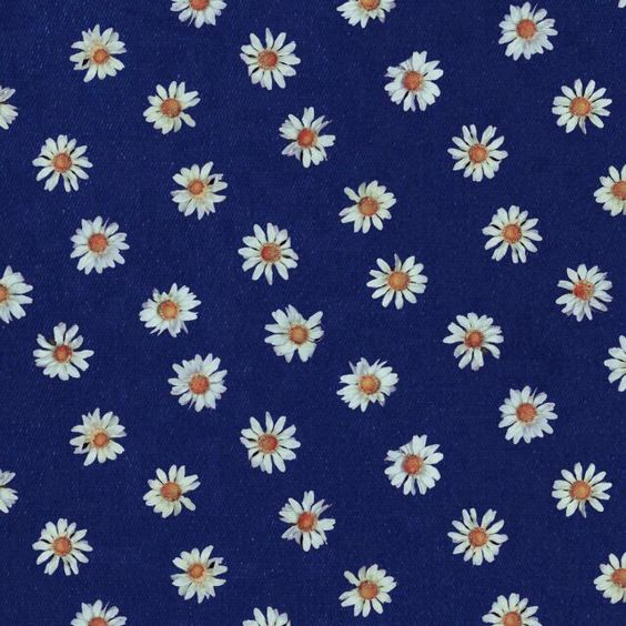 navy blue background white daisies print patterns