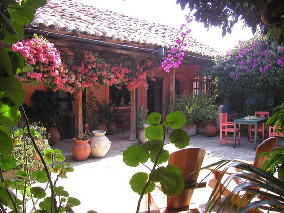 Patios interiores mexicanos for Jardines mexico