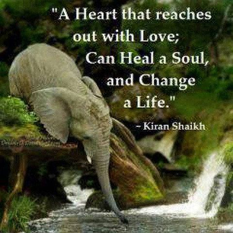 A heart that reaches out with love, can heal a soul and change a life: