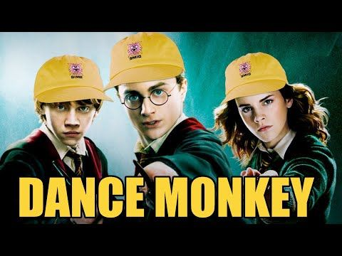 Dance Monkey Is Hot In Hogwarts Right Now Youtube Funny Songs Now Song Dance
