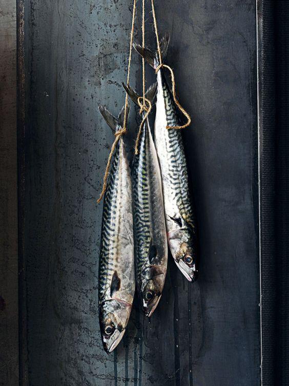 How do you present fish? pinterest.com/fra411 #food #photography - texture