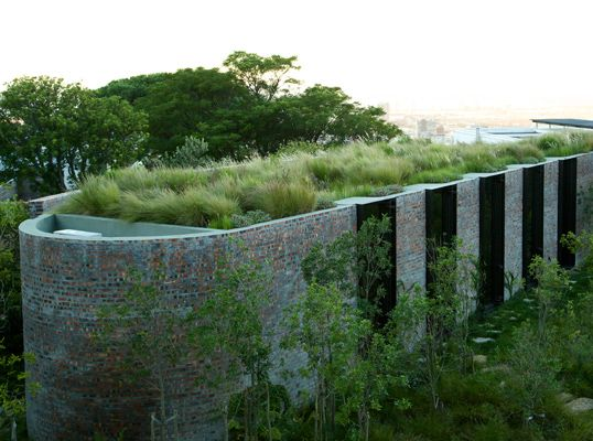 Great Franchesca Watson, Urban Nature Garden, Higgovale, Cape Town Source: Carex: Garden  Design By Carolyn Mullet | Pinterest | Urban Nature, Gardens And Green ...