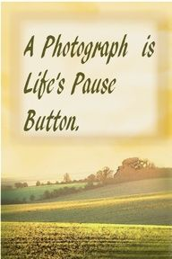 A Photograph Is Life's Pause Button.