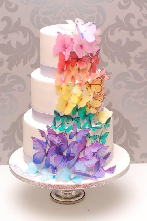 Schmetterling Torte  Livia 4  Pinterest  Torte