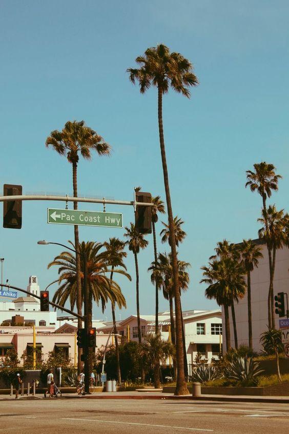 Pch Palm Trees La California Wallpaper California Travel Los Angeles Palm Trees